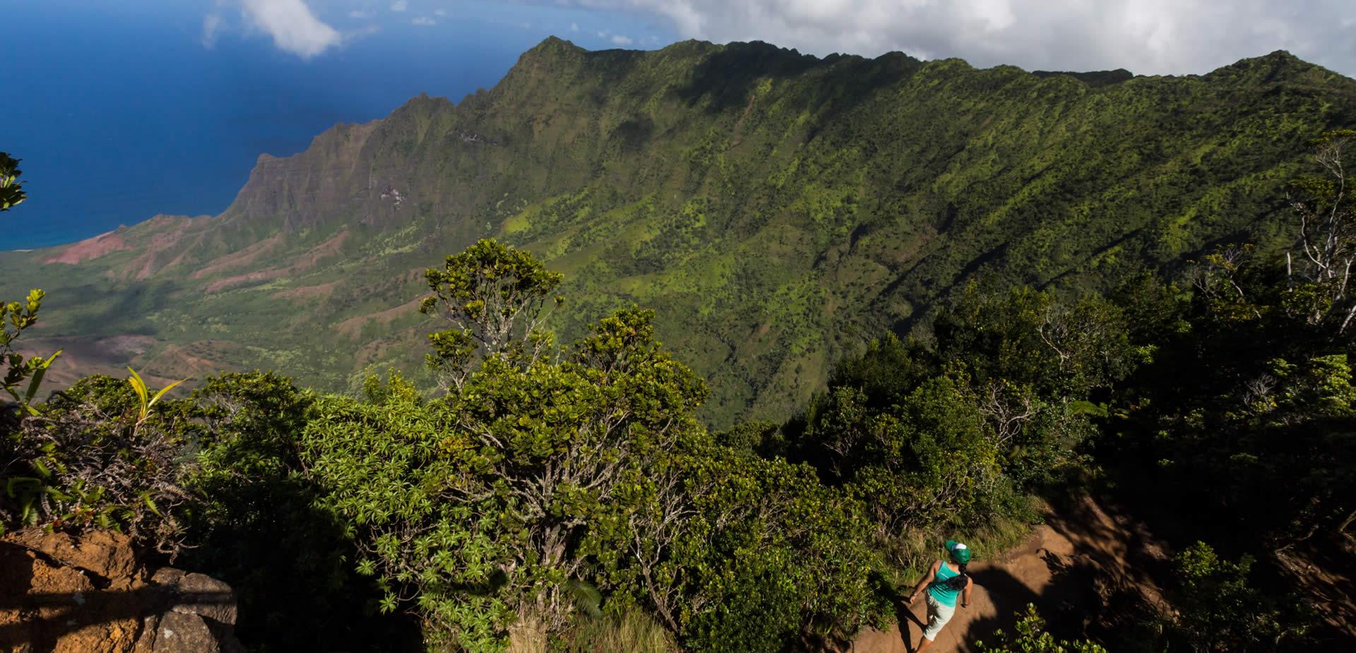 Honeymoon in Hawaii by Muriel Saldalamacchia