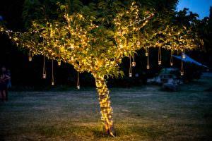 Elegant Rustic wedding in Provence (wedding tree) by Muriel Saldalamacchia Wedding planner, photo by Loic Legros