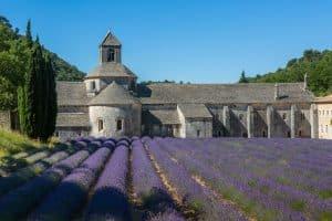 Destination Wedding in provence Abbaye de Senanque Ph.Giraud